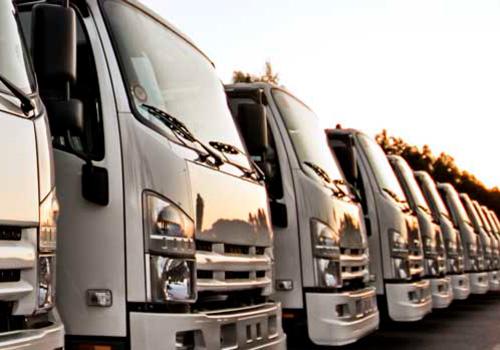 flota camiones frigoríficos